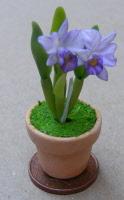 Tumdee Dolls House Miniature Orchids